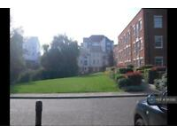 1 bedroom flat in Canterbury, Canterbury, CT1 (1 bed)