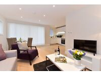 1 bed/1 bath apartment in London Bridge, fully furnished and WIFI included, 3 months min