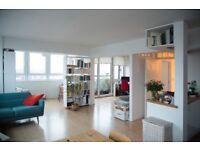 1-2 month sublet spacious flat gorgeous views Hoxton/Shoreditch