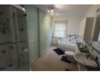 LARGE FLAT FOR RENT IN FORESTGATE DSS IS WELCOME