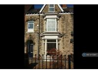 1 bedroom flat in Anlaby Road, Hull, HU3 (1 bed)