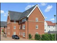 1 bedroom flat in Lundy Walk, Newton Leys, Milton Keynes, MK3 (1 bed)