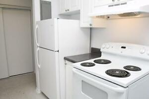 1 Bedroom for Rent near Homer Watson Blvd & Stirling Ave S! Kitchener / Waterloo Kitchener Area image 8