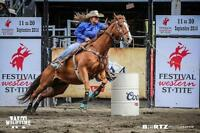 OEF certified western riding lessons