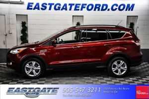 2015 Ford Escape SE with Moonroof and Navigation
