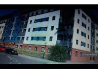 2 bedroom flat in Spring Street, Hull, HU2 (2 bed)