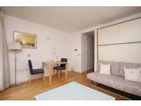Great Studio Apartment, New Providence Wharf, Canary Wharf, DLR, Pool and Gym