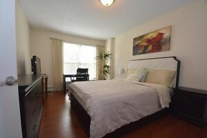 Lux South End 1 Bedroom on Corner of Cathedral/University!