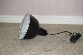 Pet Heat Lamp