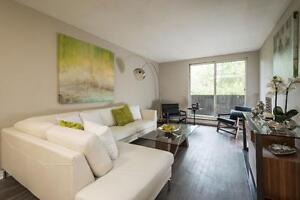 Modern Renovated One Bedroom in Strathroy - New Kitchens! London Ontario image 3