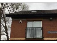 1 bedroom flat in Aspen Drive, Middlesbrough, TS5 (1 bed)