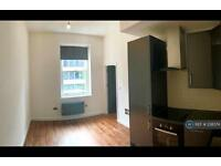 1 bedroom flat in Putney High Street, London, SW15 (1 bed)