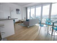 Stunning 2 bed apartment in New Canary wharf development Arena Tower, South Quay, Crossharbour-TG