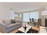 Luxurious 2 bed apartment*Borough area*Fully furnished*One month minimum