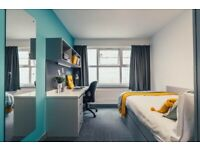 Student Room Available - Superior Plus