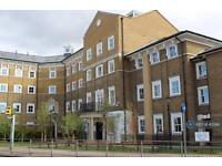 1 bedroom flat in Chancellors Place, Chelmsford, CM1 (1 bed)