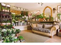EXPERIENCED FLORIST REQUIRED - The Broadway Florist, in the Cotswolds
