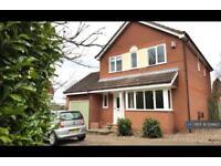 4 bedroom house in Melton Road, Wymondham, NR18 (4 bed)
