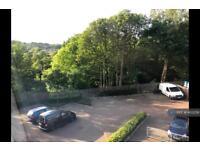1 bedroom flat in Brackendale, Bradford, BD10 (1 bed)