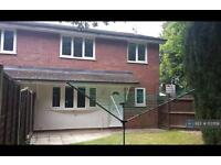 2 bedroom house in Hollymead Close, Colchester, CO4 (2 bed)