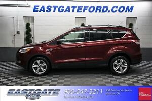 2013 Ford Escape SE with 201A pkg