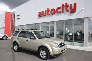 2011 Ford Escape XLT | Cruise Control | Lots of Cargo Space! | Edmonton Edmonton Area image 1