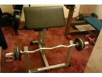 Olympic curl bar for sale