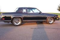 Looking for cutlass, regal or Monte Carlo