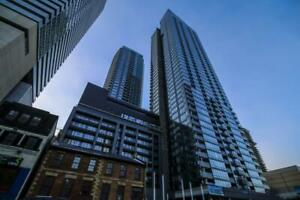 295 Adelaide St.(2 Bedroom Apartment, Downtown.)
