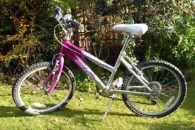 Raleigh Krush Girl's Mountain Bike in Pink with 20 inch Wheels