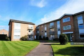 2 bedroom flat in Caroline Court, Reading, RG1 (2 bed) (#1048042)