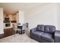 Spacious 1 bedroom flat in Ilford dss with guarantor accepted