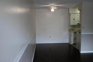 Utilities & A/C Included! 1 Bedroom Chatham Apartment for Rent