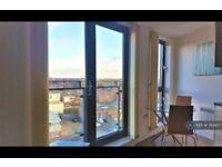 1 bedroom flat in Cross Green Lane, Leeds, LS9 (1 bed) (#782407)