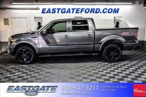 2014 Ford F-150 FX4 Special Edition