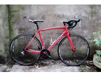 SPECIALIZED ALLEZ COMPACT 2013, 21 inch large size, racer racing road bike, 18 speed