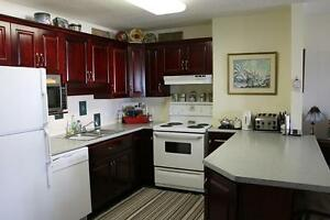 2 Bedroom Stratford Apartment for Rent: Non-Smoking, Downtown Stratford Kitchener Area image 6