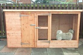 Kennel with Pent Roof