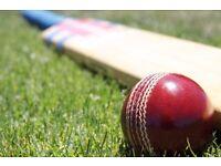 Cricket Match on Sunday 16/07 17. short 2 players