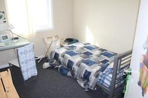 FURNISHED 5 BED STUDENT APTS * 1 MTH FREE * MAY or SEPT LEASE Kitchener / Waterloo Kitchener Area image 9