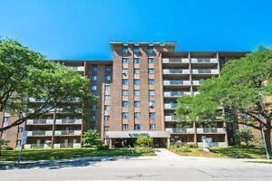 Fantastic 1 bedroom apartment for rent near Belmont Village! Kitchener / Waterloo Kitchener Area image 13