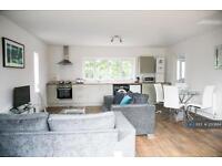 1 bedroom flat in Angel Rd, Norwich, NR3 (1 bed)