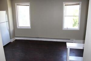 2 Bedroom Apartment in Downtown Kingston