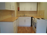 Spacious 1 bedroom flat in Croydon part dss with guarantor accepted