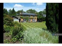 7 bedroom house in Fox Corner, Guildford, GU3 (7 bed)