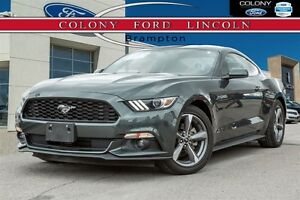 2016 Ford Mustang 6-SPEED, ECOBOOST, DRIVE ALL YEAR!