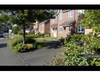 3 bedroom house in Campion Road, Hatfield, AL10 (3 bed)