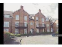 2 bedroom flat in Drey House, Wokingham, RG41 (2 bed)