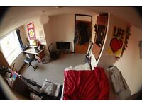 Bright and very spacious Room in Bethnal Green