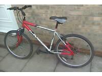 Opitma hybrid bike